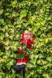 En le Santa Claus som stiger ned i en trädgård Arkivbild