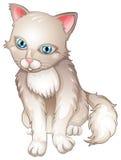 En ledsen katt Royaltyfri Fotografi