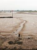 En linje i gyttjan på strandfloden Royaltyfria Bilder