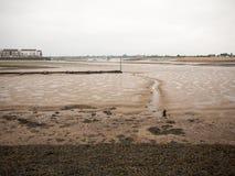 En linje i gyttjan på strandfloden Arkivfoton