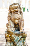 En Lion Statue Royaltyfri Fotografi