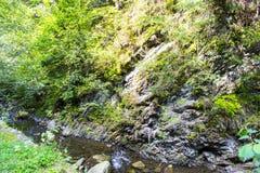 En liten bergflod Arkivbilder
