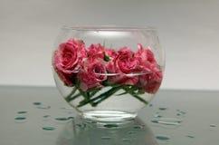 En liten bunke av rosor Royaltyfri Fotografi