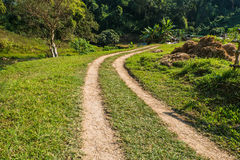 En liten grusväg som buktar överskriften till skogen Arkivbild
