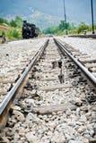 En lokomotiv och kattungar Arkivfoton