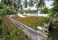 Liten kyrkogård i den mekong deltan, vietnam 2 royaltyfri fotografi