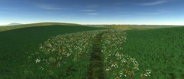 En liten lapp av gräs med vallmo och blommor Royaltyfri Fotografi