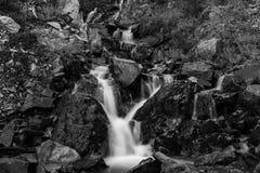 En liten men härlig mång- tiered vattenfall precis av sidan av vägen i svartvitt royaltyfria foton