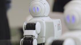 En liten robot med den mänskliga framsidan och kroppen - humanoid Closeup av en gullig autonom tjänste- robot Närbild av robothuv arkivfilmer