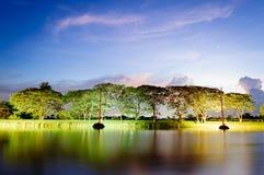 En liten sjö i sommar på solnedgången royaltyfria foton