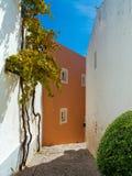 En liten trappa som leder till och med byn Alte i Portugal royaltyfri bild