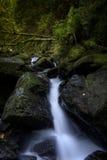En liten vattenfall nära torc Fotografering för Bildbyråer