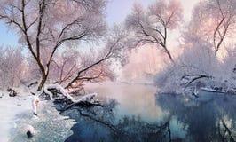 En liten vinterflod och frostade träd som tänds av morgonsolen Arkivbilder
