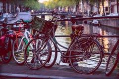 En livsföring Amsterdam fotografering för bildbyråer