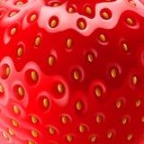 En ljus radda, är nya bär av en jordgubbe Royaltyfria Bilder