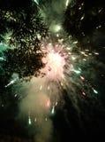 En los fuegos artificiales magníficos del cielo nocturno foto de archivo