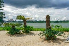 En los jardines por la bahía imágenes de archivo libres de regalías