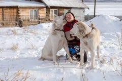En lycklig kvinna sitter med två stora herdar i snön Hunden slickar hennes framsida arkivfoton