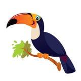 Lycklig tucanotoco royaltyfri illustrationer