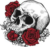 En mänsklig skalle med rosor på vit bakgrund vektor illustrationer
