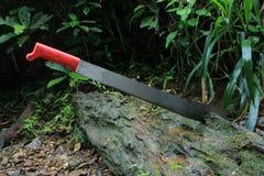 En machete som klibbas i ett träd arkivbild