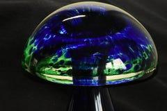 En magisk champinjon för färgglat exponeringsglas arkivfoton
