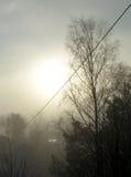 En magisk morgon Arkivbilder