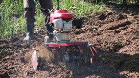 En man är en bonde i ett förorts- område, en grönsakträdgård, ploger landet med en odlare, en manuell motorisk plog som kastar le stock video