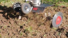 En man är en bonde i ett förorts- område, en grönsakträdgård, ploger landet med en odlare, en manuell motorisk plog som kastar le arkivfilmer