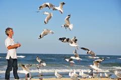 En man alone på de matande seagullsna för strand vid handen. Royaltyfri Fotografi