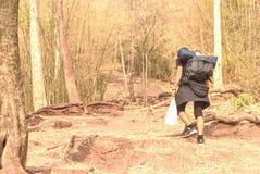 En man av turister som går den stigande Phu Kradueng mountinen Resor royaltyfri foto