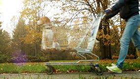 En man bär hunden i spårvagn från supermarket stock video