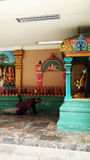 En man ber i hinduisk tempel royaltyfri fotografi