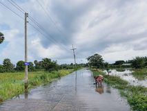 En man fångar fiskar på den översvämmade vägen i Thailand royaltyfri fotografi