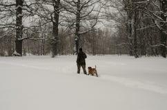 En man går med en hund under ett tungt snöfall royaltyfria foton