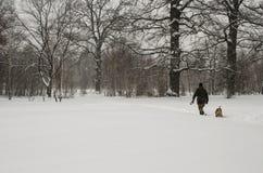 En man går med en hund under ett tungt snöfall arkivbild