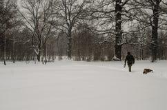 En man går med en hund under ett tungt snöfall royaltyfri bild