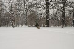 En man går med en hund under ett tungt snöfall arkivfoto