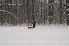 En man går med en hund under ett tungt snöfall arkivbilder