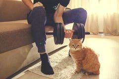 En man g?r in f?r sportar hemma med hantlar med en katt arkivbilder