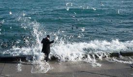 En man i en dräkt, matar fåglarna, stänktes ned med en stor havsvåg fotografering för bildbyråer