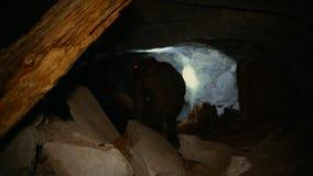 En man i mörkret med en ficklampa klättrar in i en mörk grotta stock video