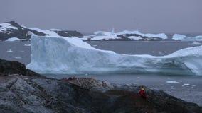 En man i röd kläder sitter på en vagga och ser glaciärerna Andreev stock video