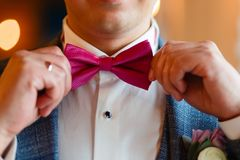 En man i en stilfull dräkt korrigerar en rosa fjäril Closeup av en företags man som justerar hans trendiga rosa färgband äganderä arkivbild