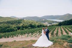 En man i en strikt dräkt och en flicka i en flott bröllopsklänning som poserar i natur bland vingårdar, berg och sjöar arkivfoto