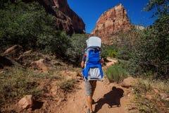 En man med hans behandla som ett barn pojken trekking i den Zion nationalparken, Utah, USA fotografering för bildbyråer