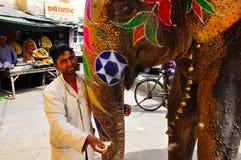 En man med hans elefant i Jaipur, Indien royaltyfria bilder