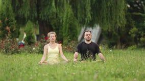 En man och en kvinna mediterar i salighet Unga yogainstruktörer övar i en stad parkerar på grönt gräs stock video