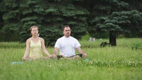 En man och en kvinna mediterar i salighet Unga yogainstruktörer övar i en stad parkerar på grönt gräs lyckat barn stock video