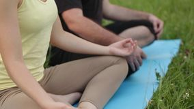 En man och en kvinna mediterar i salighet Unga yogainstruktörer övar i en stad parkerar på grönt gräs lyckat barn lager videofilmer